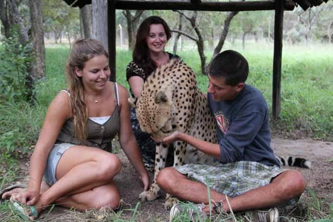 Séjour en centre de protection des espèces