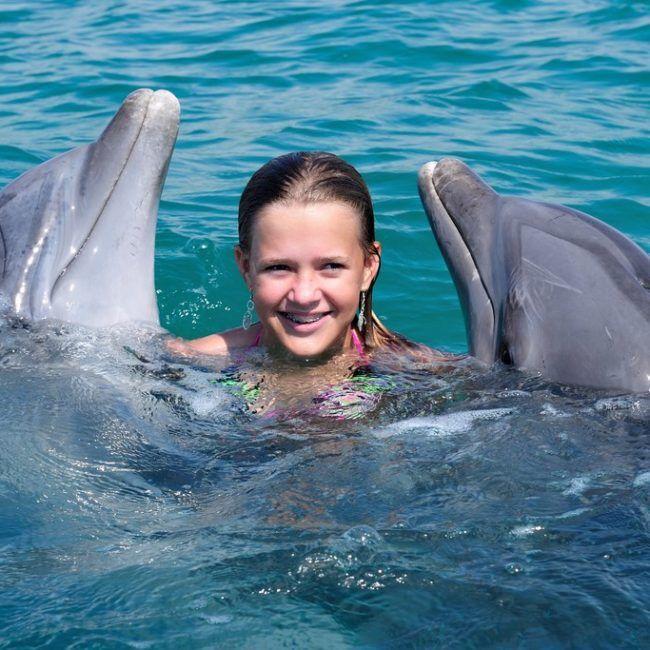 Séjour Multi-activités Bahamas: nager avec les requins / adopter un dauphin