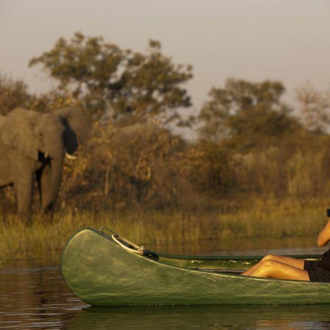 Safari en canoë et séjour aux Chutes Victoria extrêmes