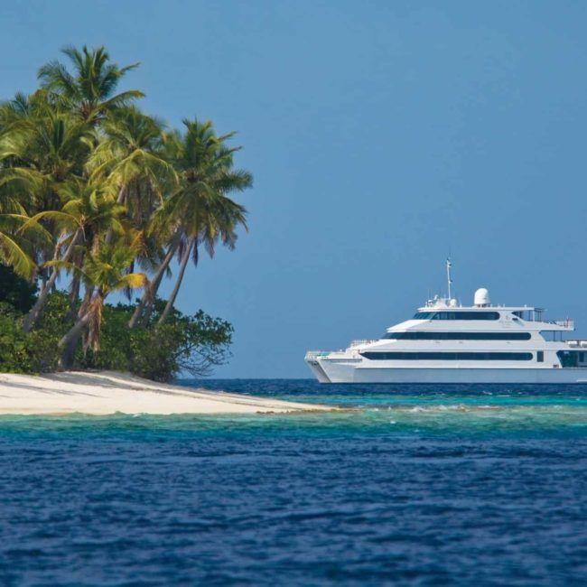 Plongée aux Maldives sur l'Explorer!