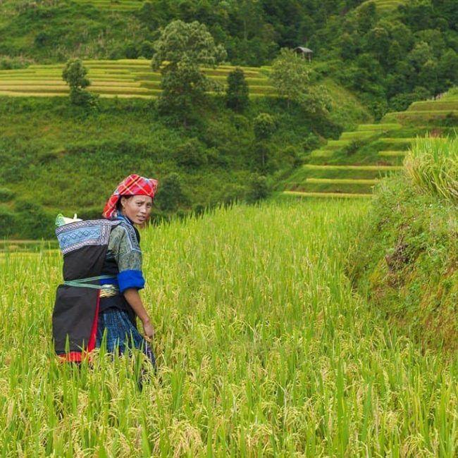 Rencontre avec les ethnies des montagnes - Laos
