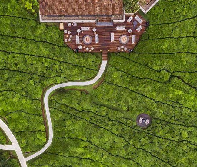 One & Only Nyungwe House - Rwanda