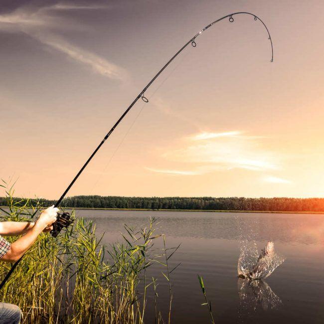Pêche sur le Plateau de l'Aubrac